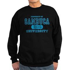Sambuca University Alcohol Sweatshirt (dark)