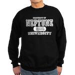 Neptune University Property Sweatshirt (dark)
