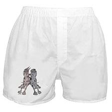 CN Mrl Lean Boxer Shorts