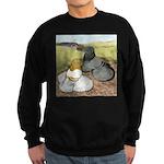 Trumpeter Pigeon Pair Sweatshirt (dark)