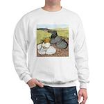 Trumpeter Pigeon Pair Sweatshirt