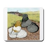 Trumpeter Pigeon Pair Mousepad