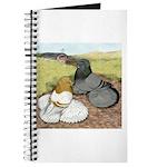 Trumpeter Pigeon Pair Journal