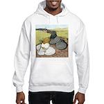 Trumpeter Pigeon Pair Hooded Sweatshirt