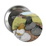"""Trumpeter Pigeon Pair 2.25"""" Button (10 pack)"""