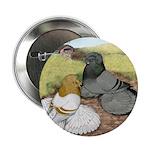 "Trumpeter Pigeon Pair 2.25"" Button"