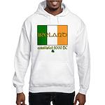 Ireland: Established 8000 BC Hooded Sweatshirt