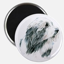 Grey Bearded Collie Beardie Magnet