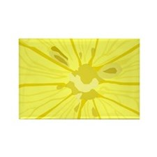 Lemon Slice Rectangle Magnet
