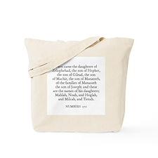 NUMBERS  27:1 Tote Bag