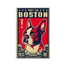 Obey the Boston! USA Rectangle Magnet