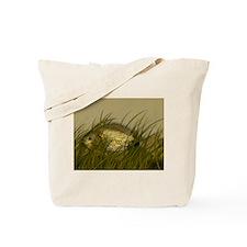 Cute Silver lake Tote Bag