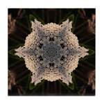 Queen Annes Lace II Tile Coaster