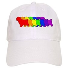 Rainbow Norfolk Baseball Cap