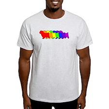 Rainbow Norfolk T-Shirt