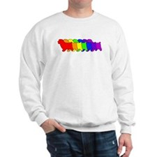 Rainbow Norfolk Sweatshirt