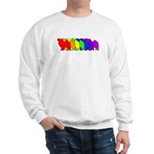 Rainbow Papillon Sweatshirt