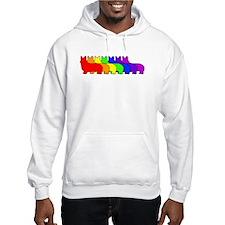 Rainbow Pembroke Hoodie