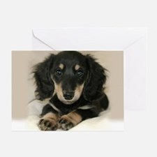 Long Haired Puppy Greeting Card