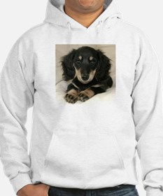 Long Haired Puppy Hoodie