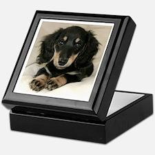 Long Haired Puppy Keepsake Box