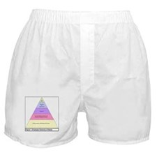 Employee Hierarchy of Needs Boxer Shorts