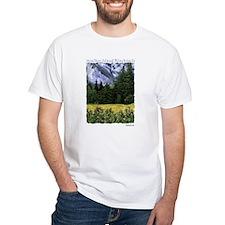 Funny Aspen grove Shirt