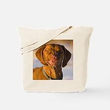 Funny Face Vizsla Tote Bag