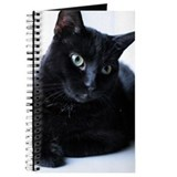 Black cat Journals & Spiral Notebooks