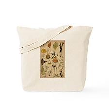 Antique Botanical--Mushrooms Tote Bag