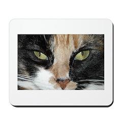 Calico Tiger Girls's Closeups Mousepad