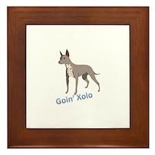 Goin' Xolo - Framed Tile