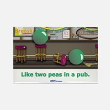 in a pub Rectangle Magnet