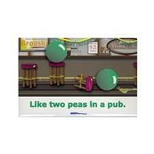 in a pub Rectangle Magnet (100 pack)