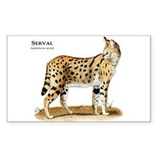 Serval Rectangle Decal
