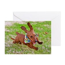 Running Red Greeting Cards (Pk of 20)