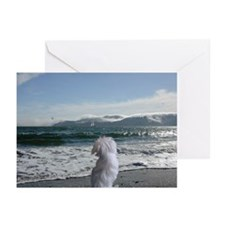 Maltese Dog Gifts Greeting Cards (Pk of 10)