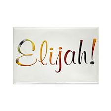 Elijah! Design #487 Rectangle Magnet