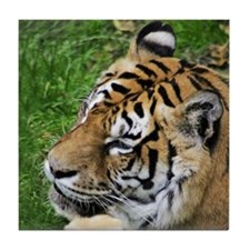 Bengal Tiger Tile Coaster