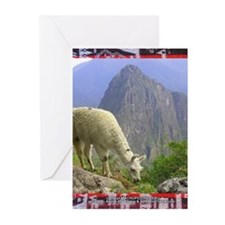 Lama at Machupicchu- Greeting Cards (Pk of 10)