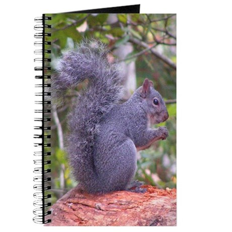 Gray Squirrel Journal