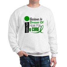 BELIEVE DREAM HOPE Cerebral Palsy Sweatshirt