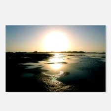 Padre Island Sunset Postcards (Package of 8)