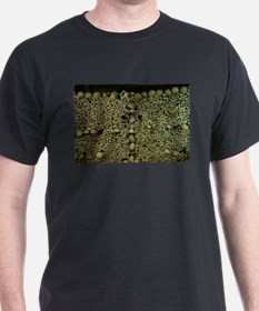 Paris Catacombs T-Shirt