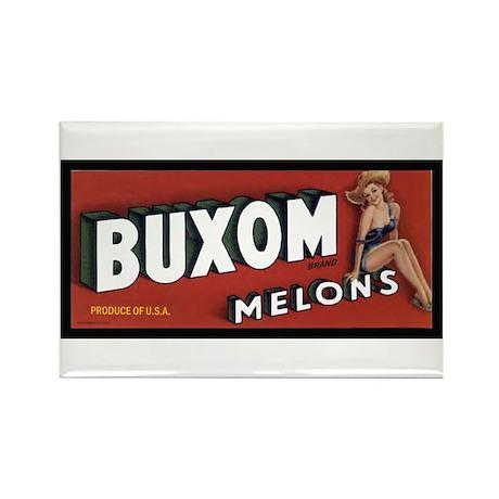 Buxom Melons Rectangle Magnet