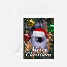 Santa Bunny Greeting Cards (Pk of 10)