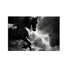 Cool Black horse Rectangle Magnet