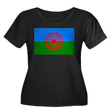 Romani Flag (Gypsies Flag) T