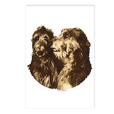 Scottish Deerhound Portrait Postcards (Package of