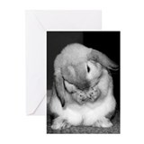 Rabbits Greeting Cards (10 Pack)
